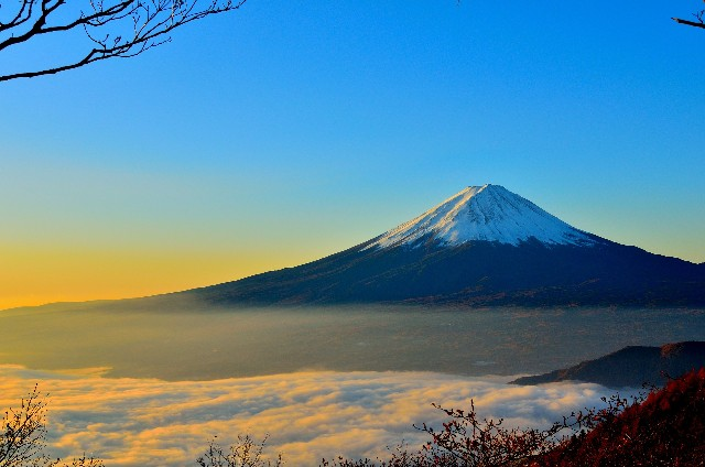 טיול בהתאמה אישית ליפן- איש העולם