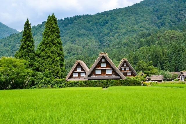 טיול ליפן האלפים היפנים