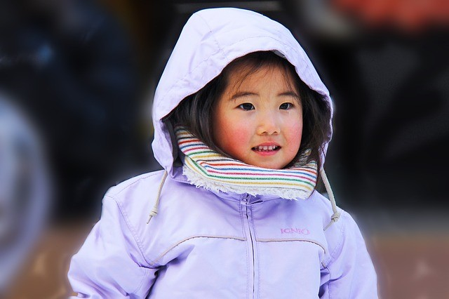 טיולים ביפן למשפחות