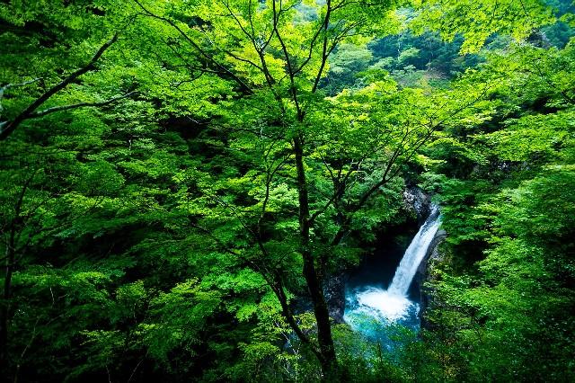 טיול ליפן, קאמיקוצ'י