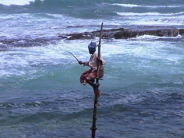 טיול לסרי לנקה, דייג על עמוד