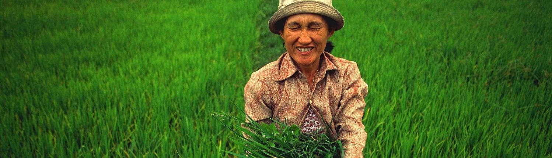 טיול לוייטנאם המלצות