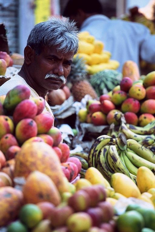 שוק בורנאסי, טיול להודו