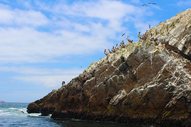 שקנאים באיי באייסטס, טיול לפרו