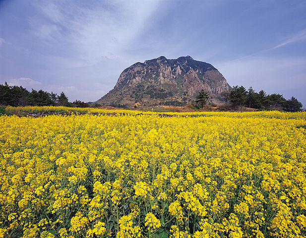 By Korea.net Korean Culture and Information Service (Photographer name), CC BY-SA 2.0, httpscommons.wikimedia.orgwindex.phpcurid=31717295