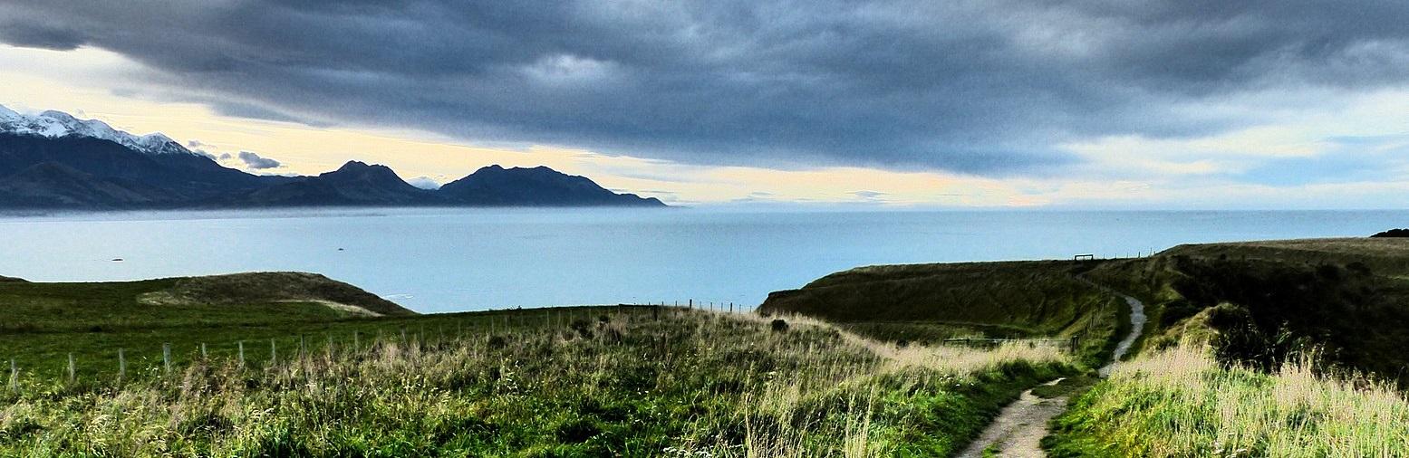 By Bernard Spragg. NZ from Christchurch, New Zealand - Kaikoura. In camera effects Lumix FZ200., CC0, https://commons.wikimedia.org/w/index.php?curid=70555724